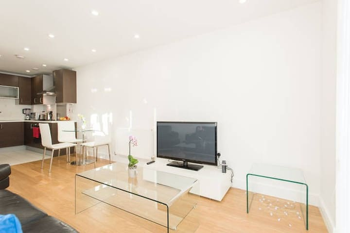 STUNNING 1 BED  CENTRAL LONDON APARTMENT WITH GYM - Lontoo