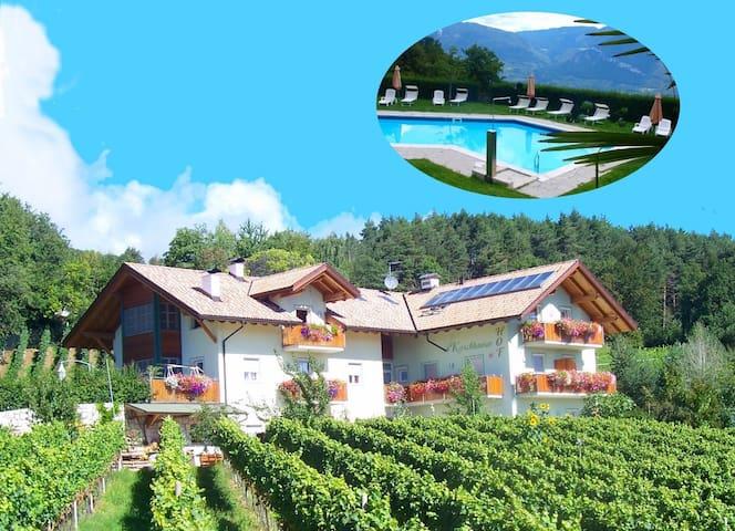 Wohnung (3-8)  im Weinberg mit Pool  und Talblick