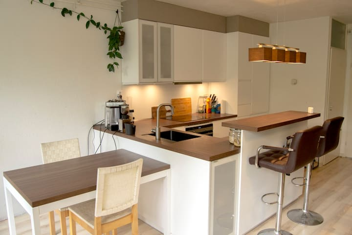 Modern furnished apartment with garden