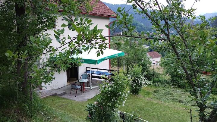 Apartman u vikend kuci Careva Cuprija