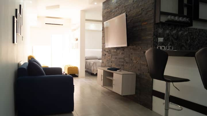 Remodeled 1 BR Apt. in Guayaquil Centro w a View