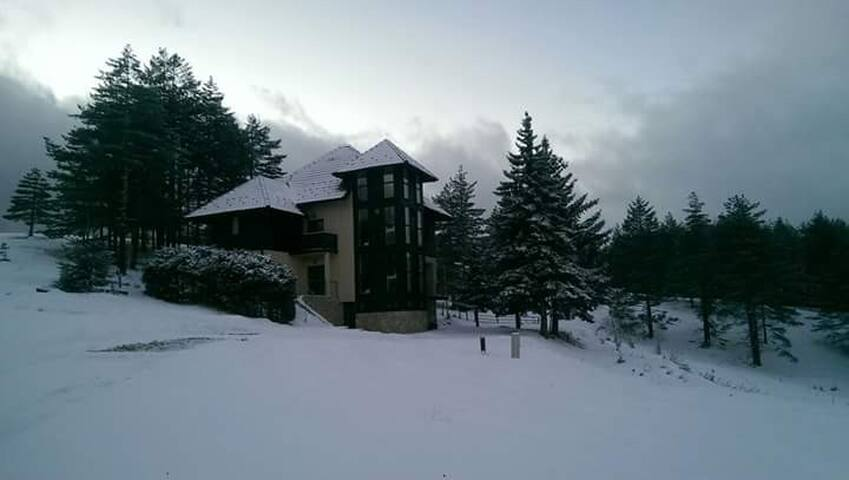 Villa Zabac - Čajetina - Wohnung