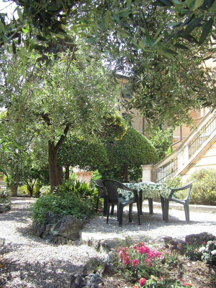 Suite  Giardino degli ulivi