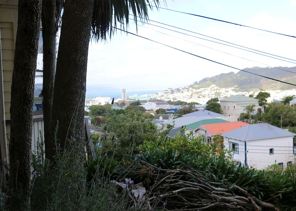 Wellington views from front deck