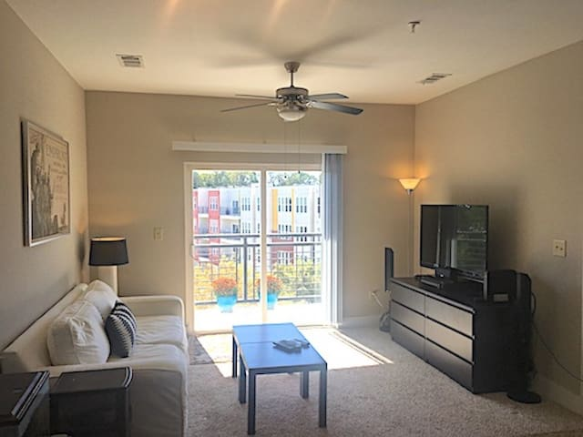 Great November Rental in Downtown Raleigh