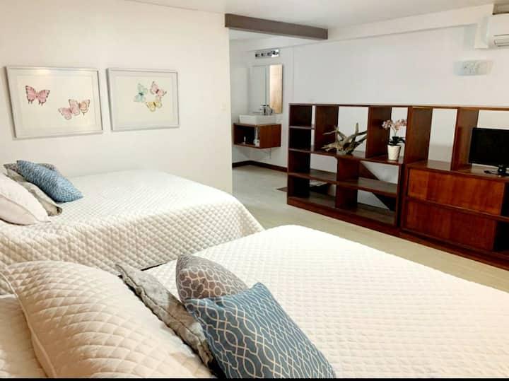 Sofisticado y Cómodo Apartamento tipo Loft z.9