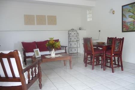 Garden Apartment - Mount Nesbit - Lakás