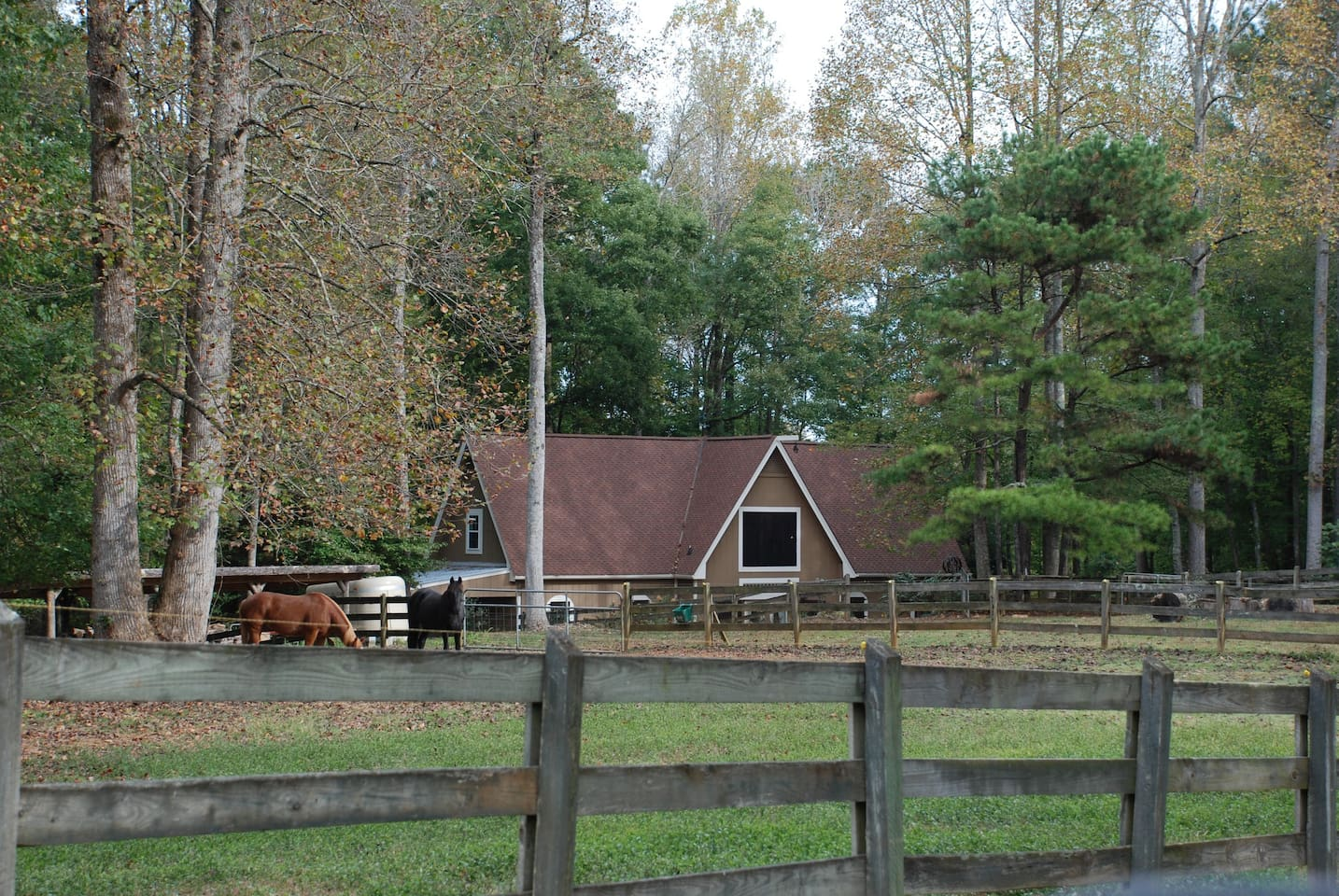 Equestrian Guesthouse