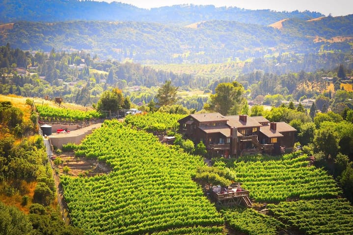 Stay at a Stunning views with Vineyard and Winery - Moraga