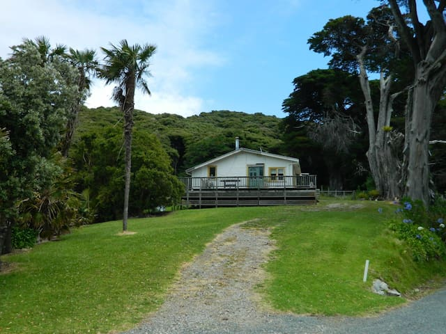 Shoal Bay Cottage - Great Barrier Island - Rumah