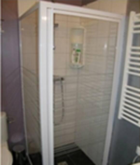 Salle de douche avec toilettes et lavabo