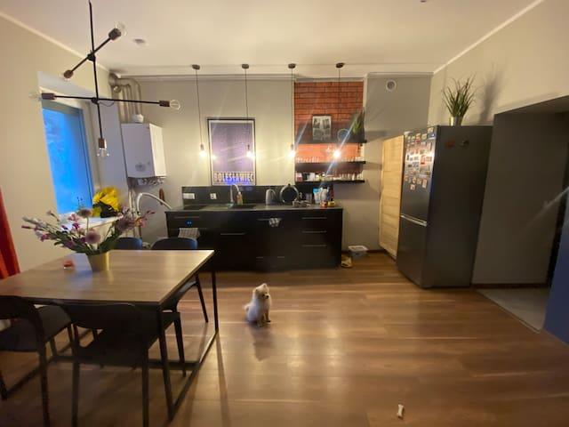 Mieszkanie w Śródmieściu, przestronne 47m2