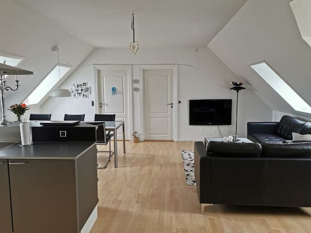 100 ㎡ new apartment, danish style with big room