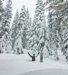 Powder Alert! Cozy Lakeside Studio. - Tahoe Vista