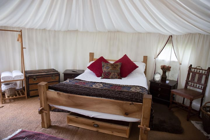 Inside one of the woodland Yurts