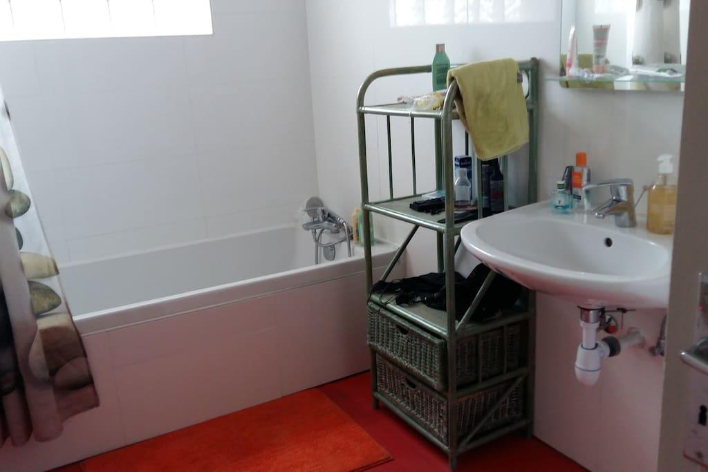 Salle de bain baignoire/douche