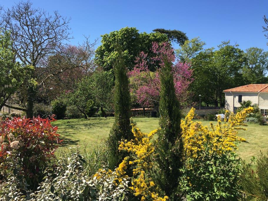Accès Villa, Jardin