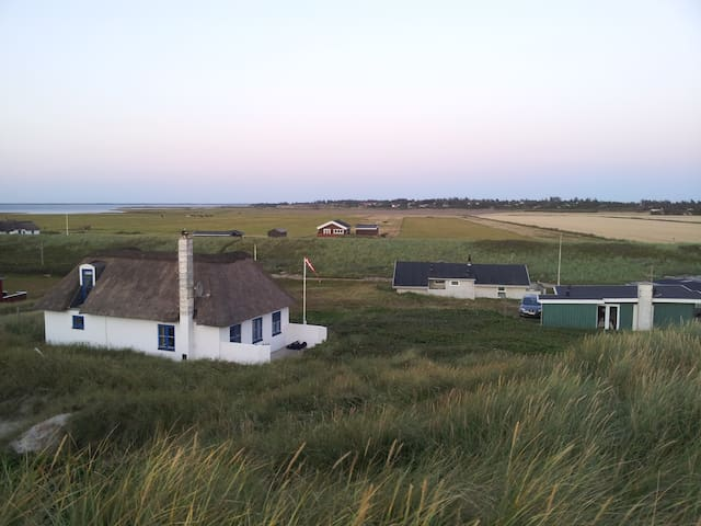 View from the dune - Pop is the green house.