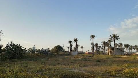 Maison à Djerba Midoun