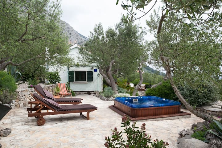 ctma141/ Lovely holiday house is located in a secluded place, surrounded by olive trees and greenery and is perfect for a family of 2-4 people