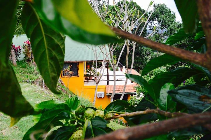 Villa Shanti Ocean View Jungle Apt #1 - Playa Hermosa - Apartmen