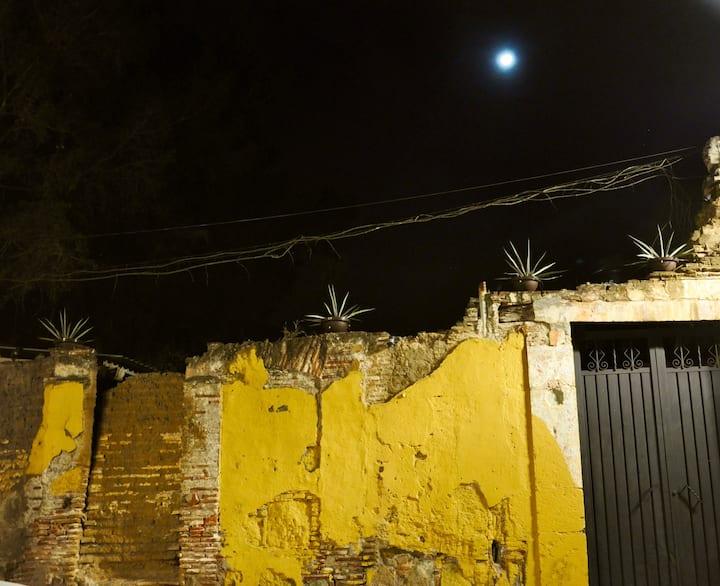 Colores y Texturas Nocturnas de  Oaxaca