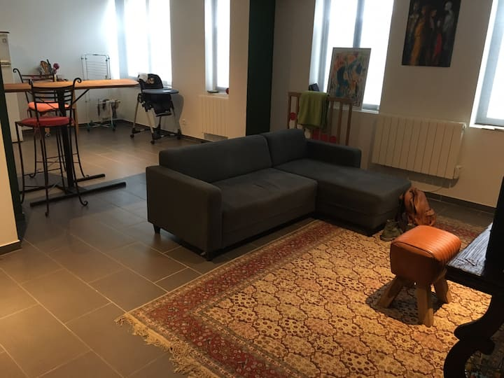 Appartement cosy campagne lilloise