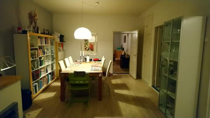 Cozy spacious flat in a nice area near city