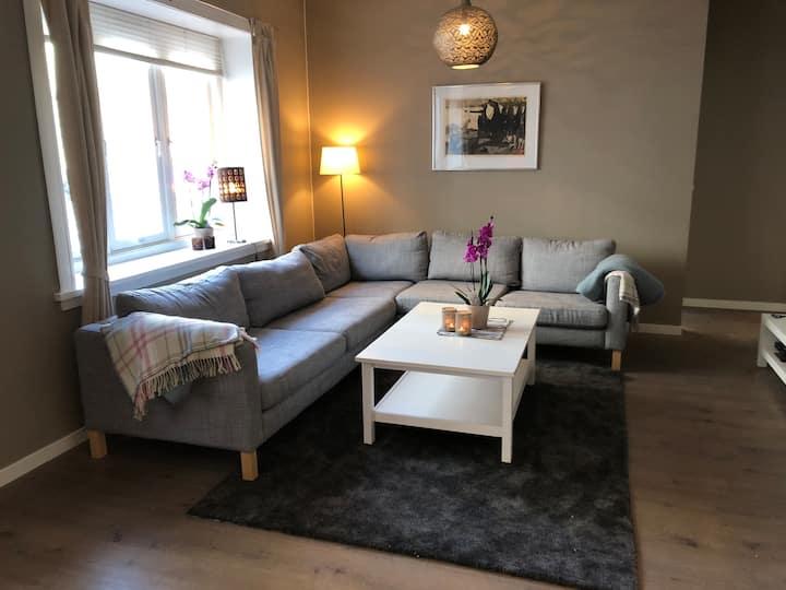 Spacious Central Oslo apartment in quiet area