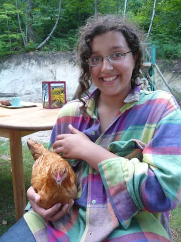 Getting to know the chickens