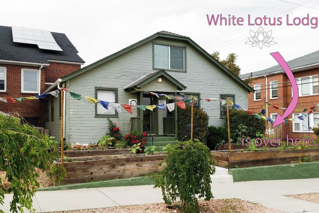 You'll arrive at the Moon Rabbit Wellness Center and use white lotus gate to access White Lotus Lodge