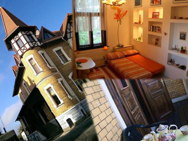 Soukromý pokoj v krásné vile v centru města Cheb