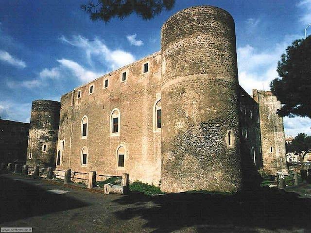 A pochi passi da casa il Castello Ursino _ Museo Civico