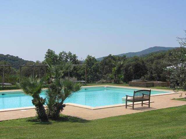 Beautiful refurbished farmhouse with pool & garden - Sassetta - House