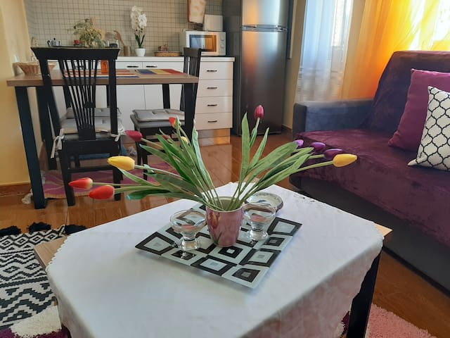 Spacious, charm and warm apt. in center-2 min walk
