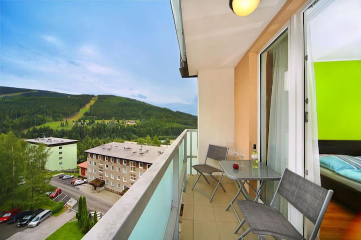 Bedřichov apartment with mountain view