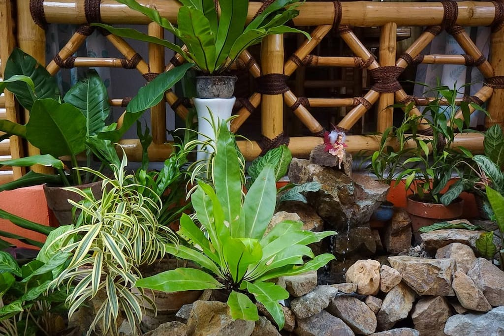 Be lulled to sleep by the trickling water in your little rock garden or spend a little time touching leaves of exotic plants.
