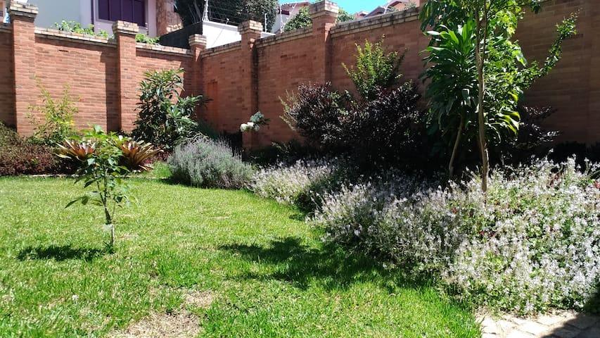 Espaço com muito verde no Jardim Chapadão