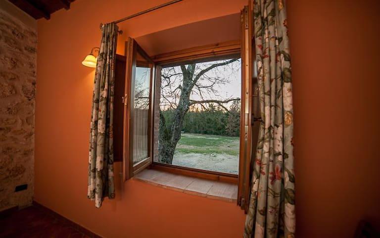 '' il Tesoro '' Country inn - Acquasparta - Lägenhet