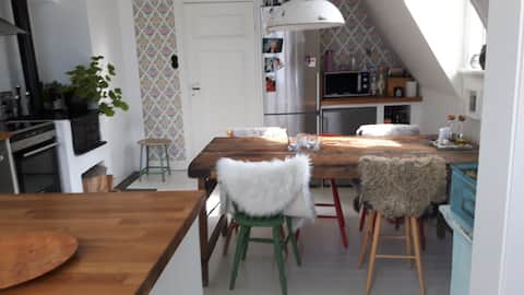 Charming rooftop flat in Vaxholm