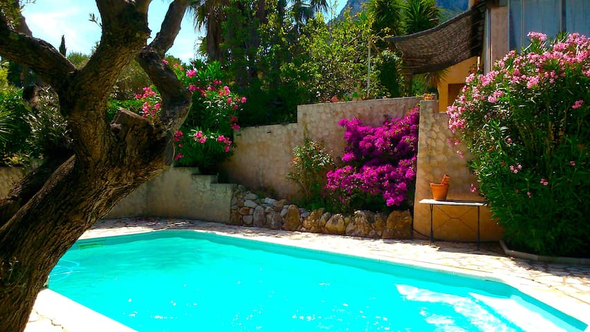 Charming house with swimming pool - La Farlède - House