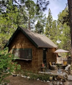 Tiny Mountain Cabin under the pines. Dogs ok.