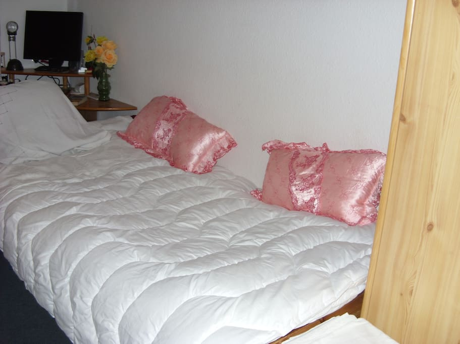 Bedroom with a single bed