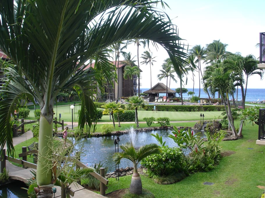 View from Lanai Enjoy eating outside, 4 chairs, table and lounge chair, view of ponds, putting green, pool and ocean!