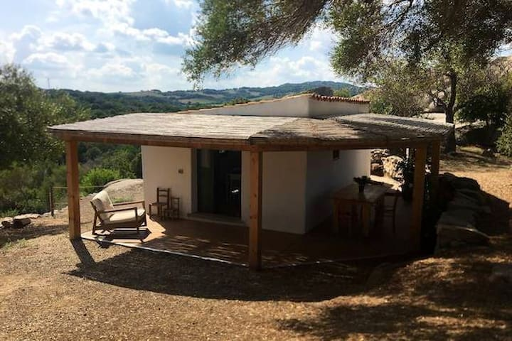 Sardinian Country Studio