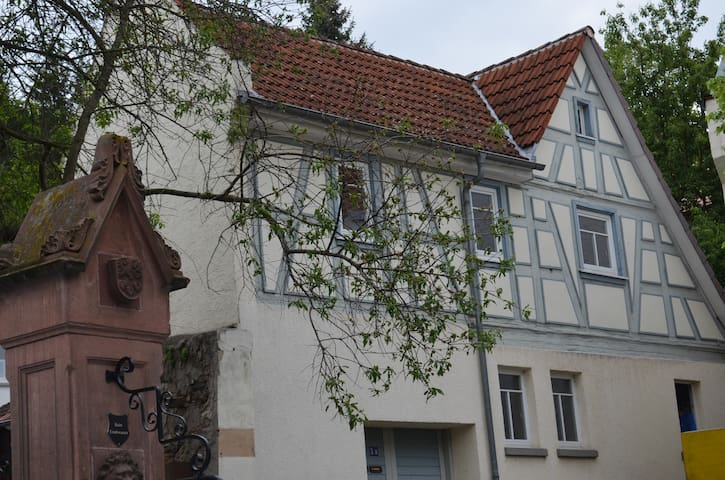 Lovingly updated historic house (300+ years old) - Zwingenberg - Casa