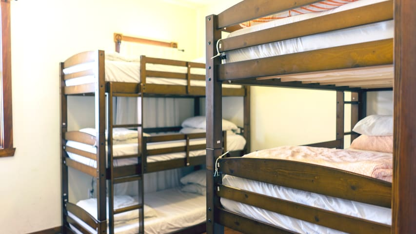 Single Bed in 6 Bed Female Dorm at Downtown Hostel