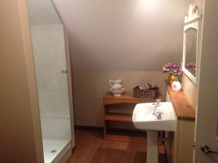 Bedroom with en suite, with spacious shower and wash hand basin.
