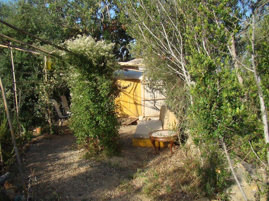 Entrada yurta