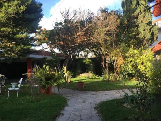 EL NIDO. Angelópolis 2